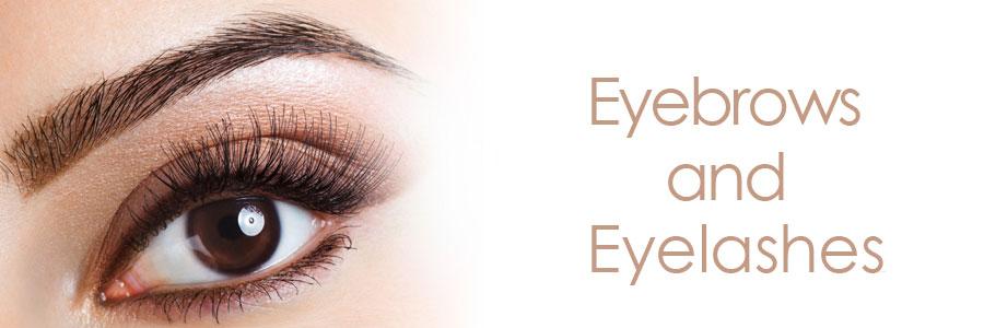 eyebrows-and-eyelashes-1
