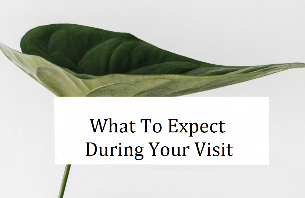 Your Visit – What To Expect